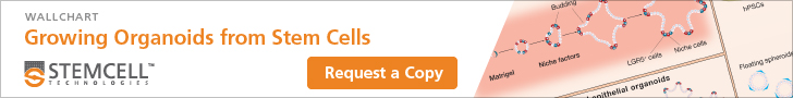 Request a free copy of the Growing Organoids from Stem Cells Wallchart
