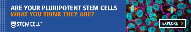 Are Your Pluripotent Stem Cells What You Think They Are? Explore Now.